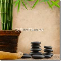 bharat tiwari:: feng shui explained